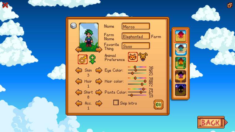 Charaktererstellung vom Spiel Stardew Valley