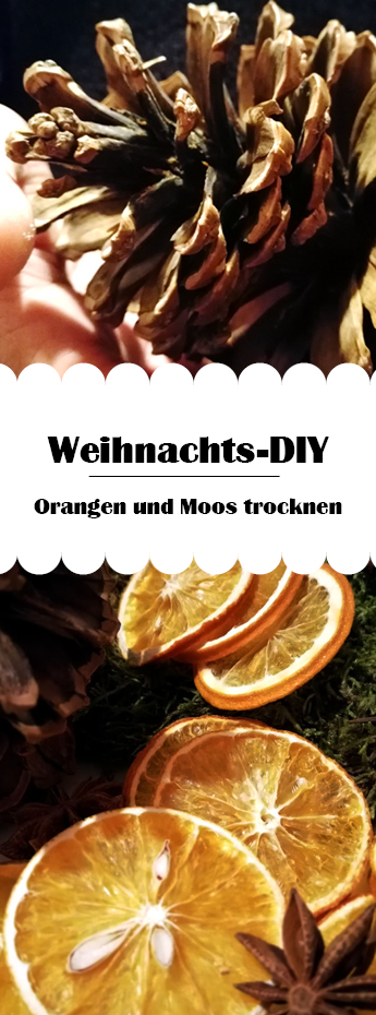 Pinterest DIY Orangen und Moos trocknen