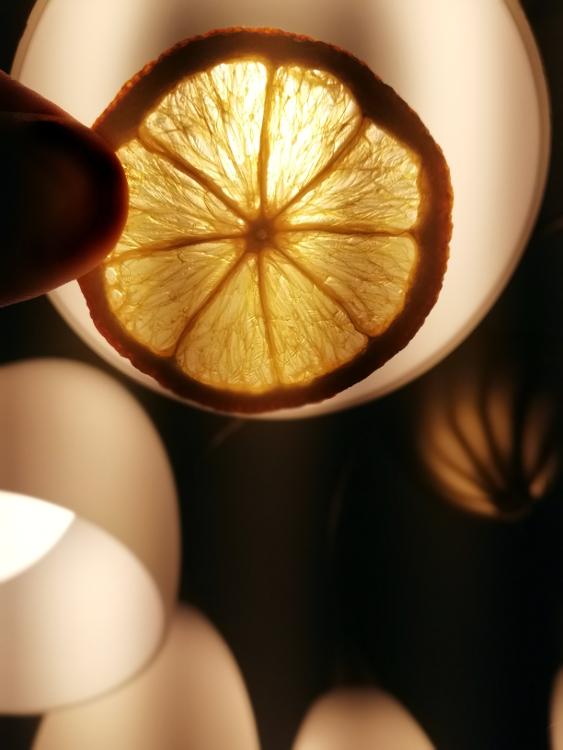 Orangen Scheiben selbst trocknen diy