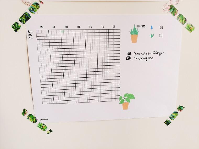Tagesübersicht für Zimmerpflanzen Dünger Gerstengras