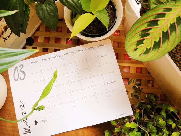 Kalender 2020 zum Ausdrucken | Freebie