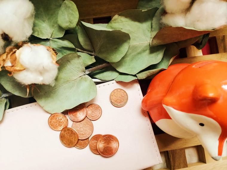 Wie und wo kann man Geld sparen auch für Anfänger