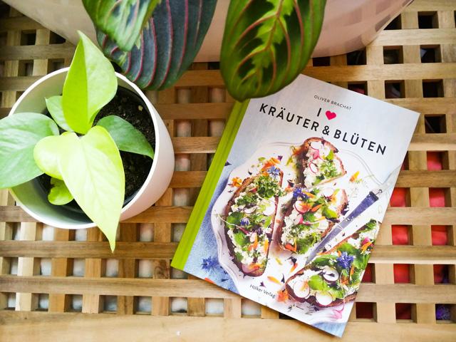 Mit Kräutern kochen und anpflanzen Buchtipp
